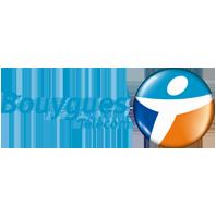 Bouygyes